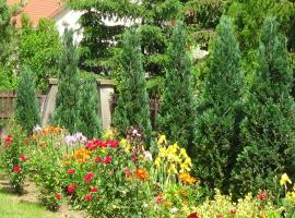 Rózsakert Vendégház, Romhány (рядом с городом Kisecset)
