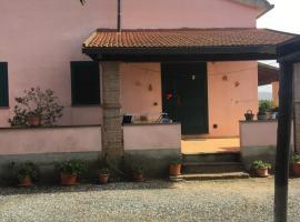 Agriturismo gli Ulivi, Fattoria Badiola