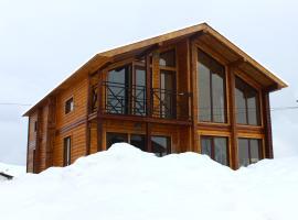 Gudauri Log Inn