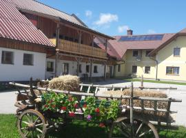Ötscherblick Fam Winter, Frankenfels (Texing yakınında)