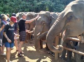 Ngapali Elephant Campground
