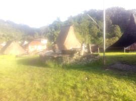 Lodge Daniel's Moni, Basa (рядом с городом Ndetuwaru)