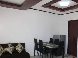 Lemon Transient House Puerto Princesa Palawan