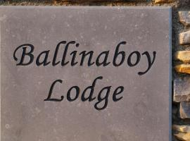Ballinaboy Lodge Bed and Breakfast, Carrick on Shannon (рядом с городом Leitrim)