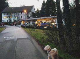 Guesthouse Nackermühle, Lottstetten (Rafz yakınında)
