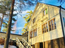 Salonsaaren Lomakylä, Асиккала (рядом с городом Ваакси)