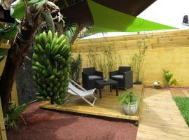 Les Palmiers verts, Le Tampon