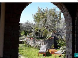 La collina degli olivi, Carmignano