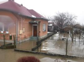 Alföldi kuckó, Békéscsaba (рядом с городом Szabadkígyós)
