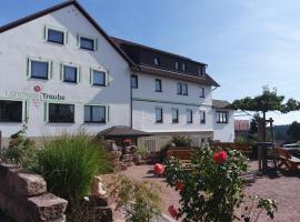Landhotel Traube, Seewald (Erzgrube yakınında)