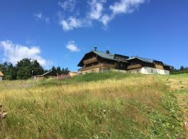 Almberghütte, Mitterfirmiansreut (Philippsreut yakınında)