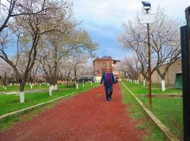 Three Jugs B&B, Erivan (Kamaris yakınında)