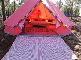 Coral Musa Tent