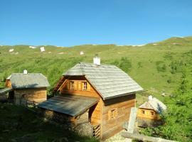 Lärchenhütte by ALMNESS®, Ramingstein (Innerkrems yakınında)