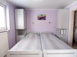 Apartman i sobe Pavek, Pisarovina