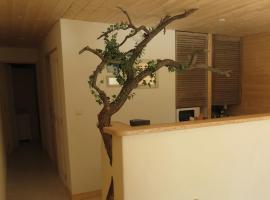 Le gite du grand cèdre, Allemagne-en-Provence