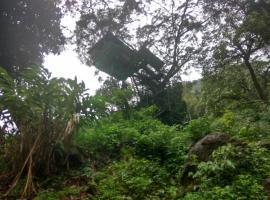 Wayanad Green Forest, Meppādi