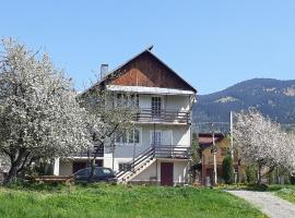 Vila Cascada, Борша (рядом с городом Statiunea)