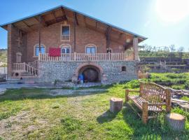 Village House in Kakheti region, Khashmi (рядом с городом Сагареджо)