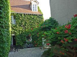 la vigne vierge, Châteauneuf-sur-Loire