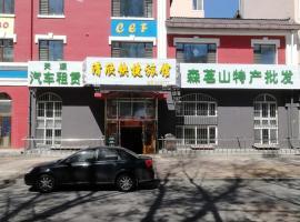 Qingxin Express Guesthouse, Yichun (Jinshantun yakınında)