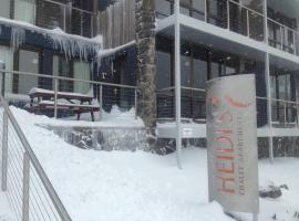 Snowstay at Heidi's