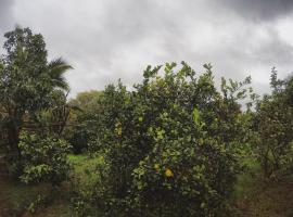 Ivi hati house, Hanga Roa (Isla de Pascua yakınında)