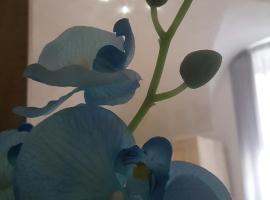 Casa Orchidea