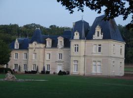 Chateau de Jalnay, Glénouze (рядом с городом Pas-de-Jeu)