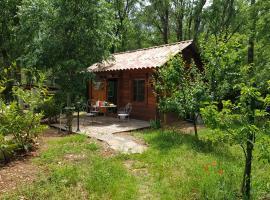 La cabane de Pioupiou