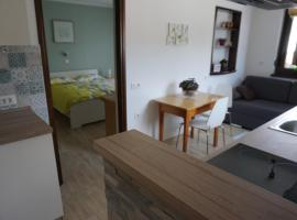Apartma Irena Volče
