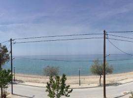 Callistemon Colony Sea Front, Paradisos