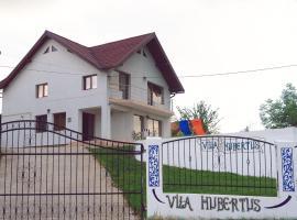 Vila Hubertus, Curtea de Argeş