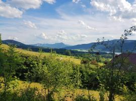 Landhaus Riess, Zell am Moos