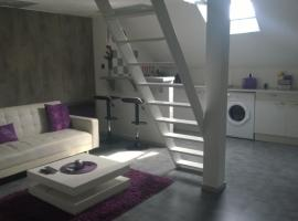 Studio Cosy Plein centre ville, Лон-ле-Сонье (рядом с городом Villeneuve-sous-Pymont)