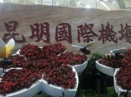 Miaoling Guesthouse(Free Shuttle), Kunming (Tangchi yakınında)