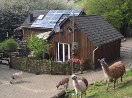 Funny-Farm, Sassen (Mosbruch yakınında)