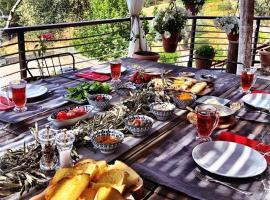 sanatbahçem, Izmir (in de buurt van Torbalı)