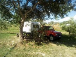 Auto Camping Fier, Fier (Sheqi i Vogël yakınında)