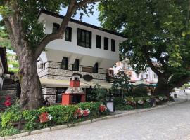 Chavkova house, Мельник