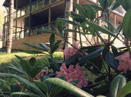 Saimaa Resort Family Apartment, Рауха (рядом с городом Arpolahti)