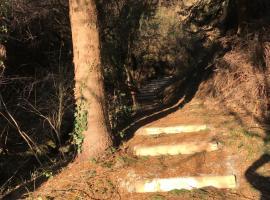 Forest House Vidracco, Vidracco
