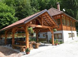 Vila Kosca - house for rent