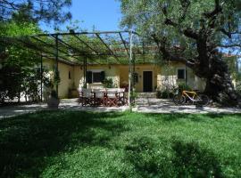 TheNi Olive Grove Villa, Káto Yerakaríon (рядом с городом Áyios Dhimítrios)
