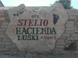 Apartment and Rooms Hacienda Stelio