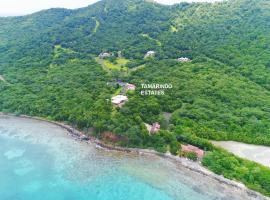 Tamarindo Estates Beach Apts.