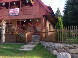 Cabana Ancuta, Vartop