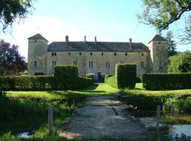 Château d'Ozenay, Ozenay (рядом с городом La Chapelle-sous-Brancion)