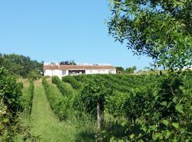 Vineyard View Studio France, Le Fleix (рядом с городом Saint-Méard-de-Gurçon)