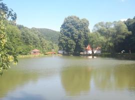 Rybník Mírov-starý mlýn, Mírov (Svojanov yakınında)